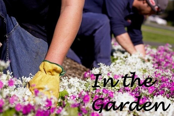 In the Garden_-5904212552433513756