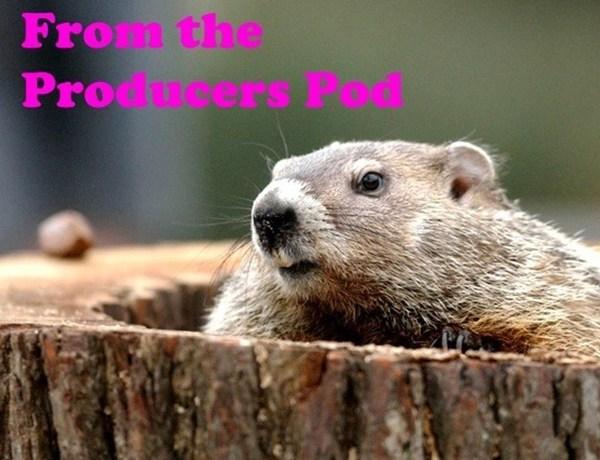 Pod Groundhog_1675175232504351948