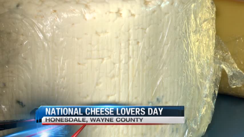 Say Cheese-  National Cheese Day_20160121071012