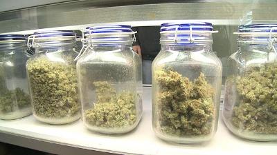 Medical-marijuana-jpg_20160225155526-159532