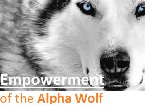 Alpha_1468615252079.jpg