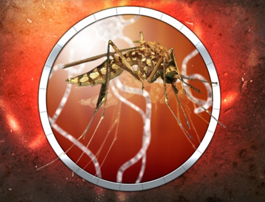 OTS_west_nile_virus_1467408439563.jpg