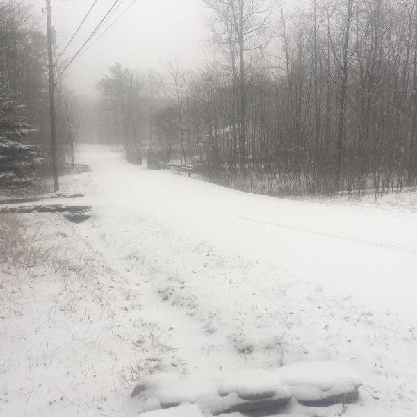 Briana snow video_1483025491955.jpg