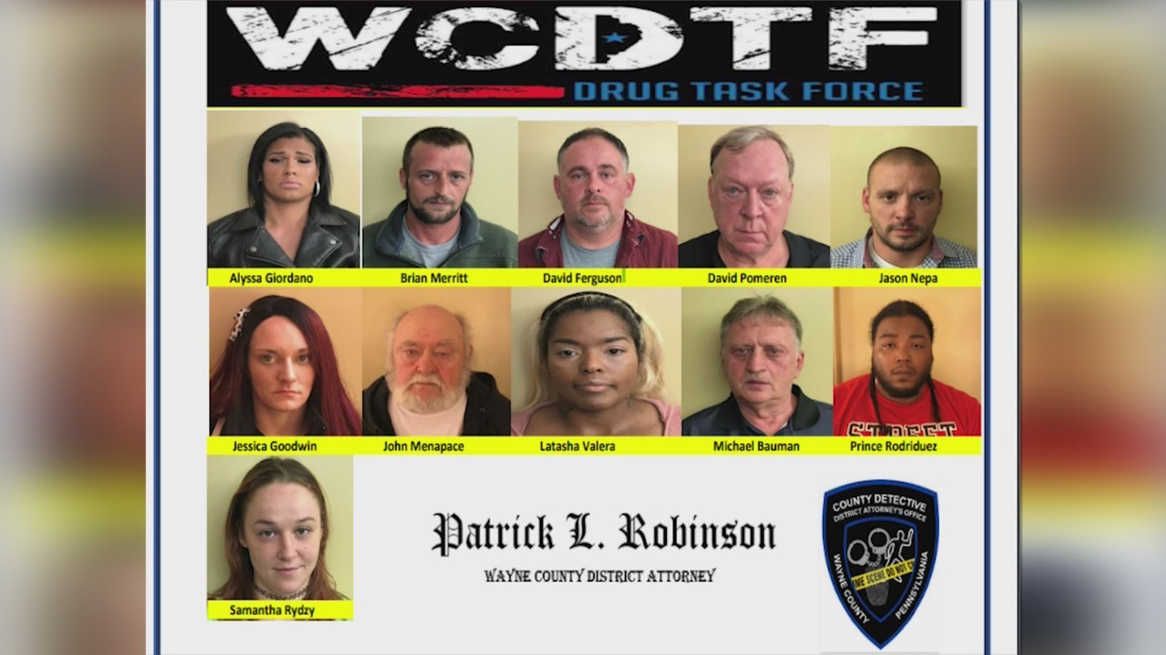 11 arrested in prostitution sting in Wayne County