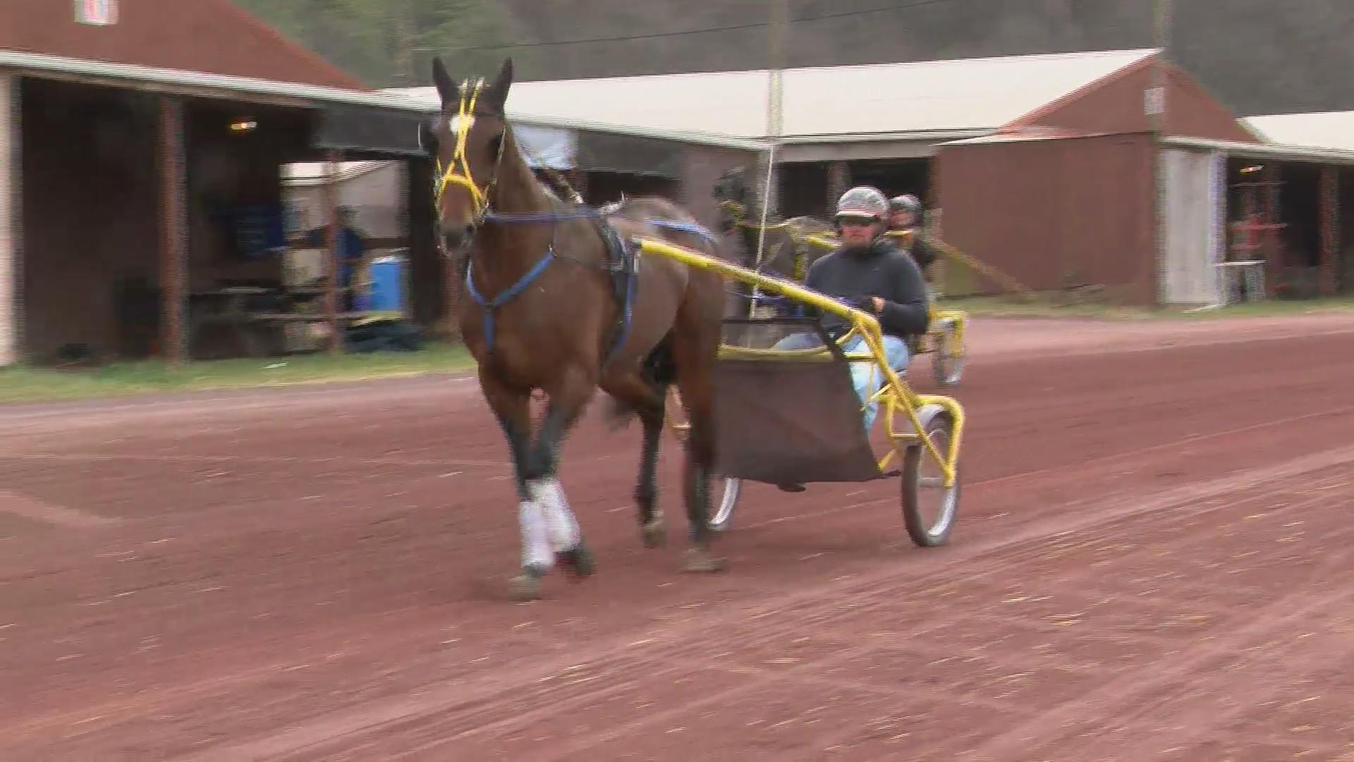 Horse_Racing_Begins_0_20190410164757