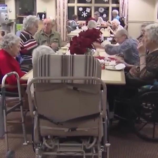 Nursing_Home_report_0_20190605040719
