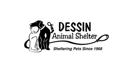 Dessin Animal Shelter