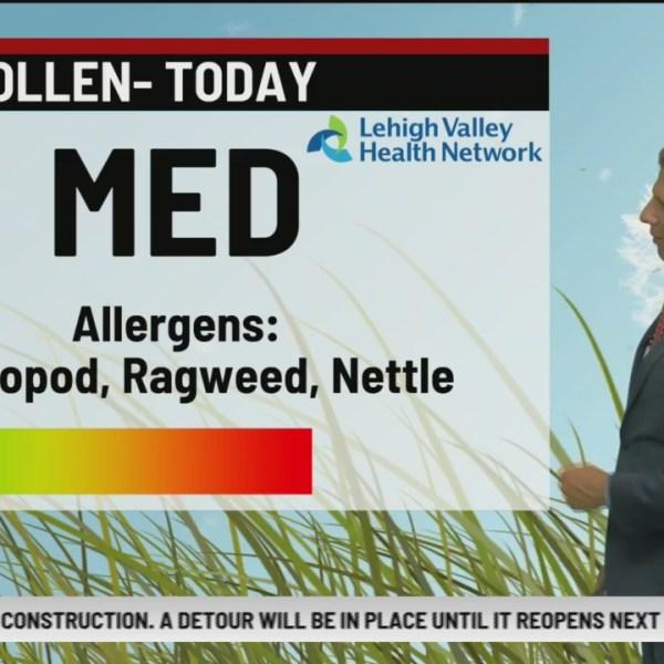 Allergy Alert: August 20, 2019