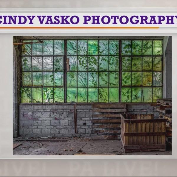 PA Live! Cindy Vasko Photography September 16, 2019