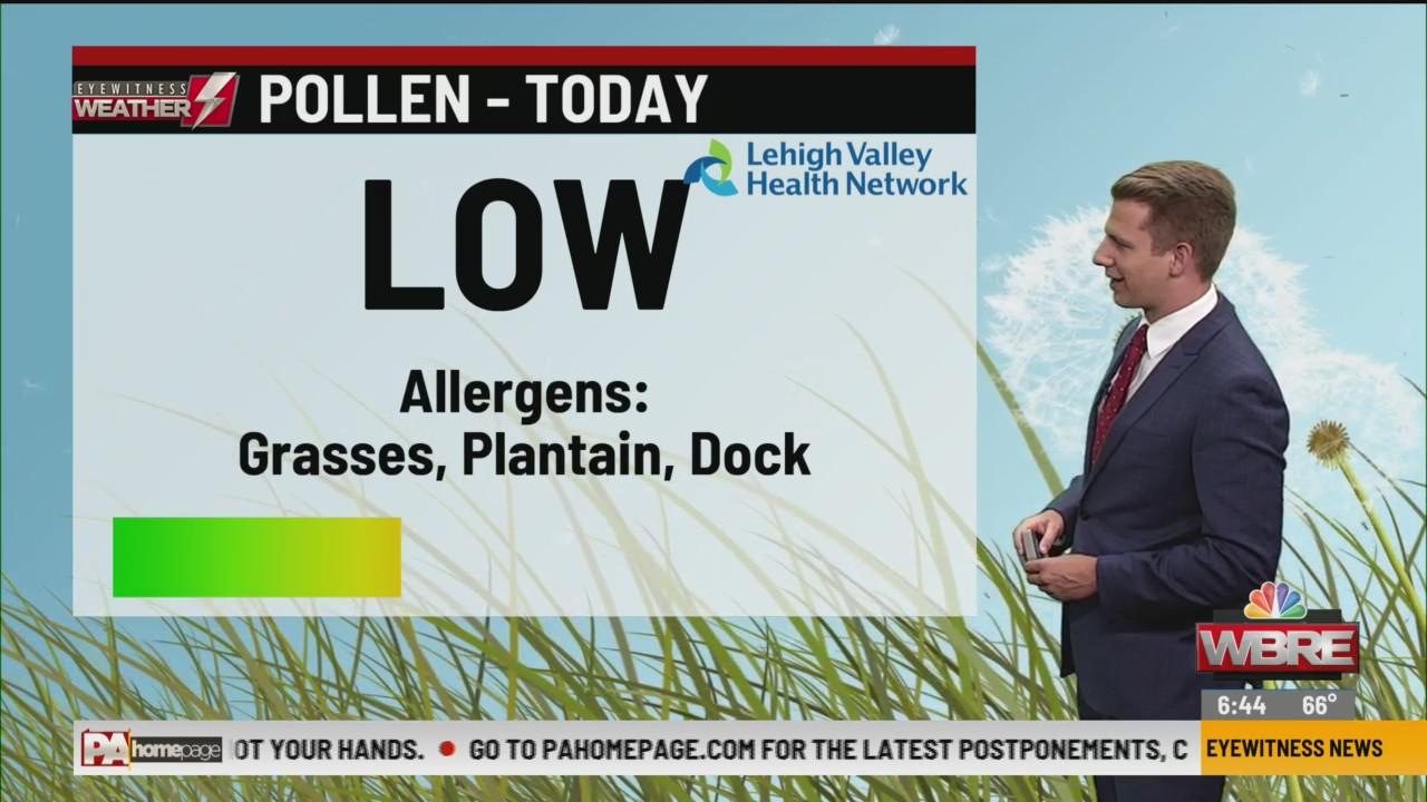 Allergy Alert: June 22, 2020