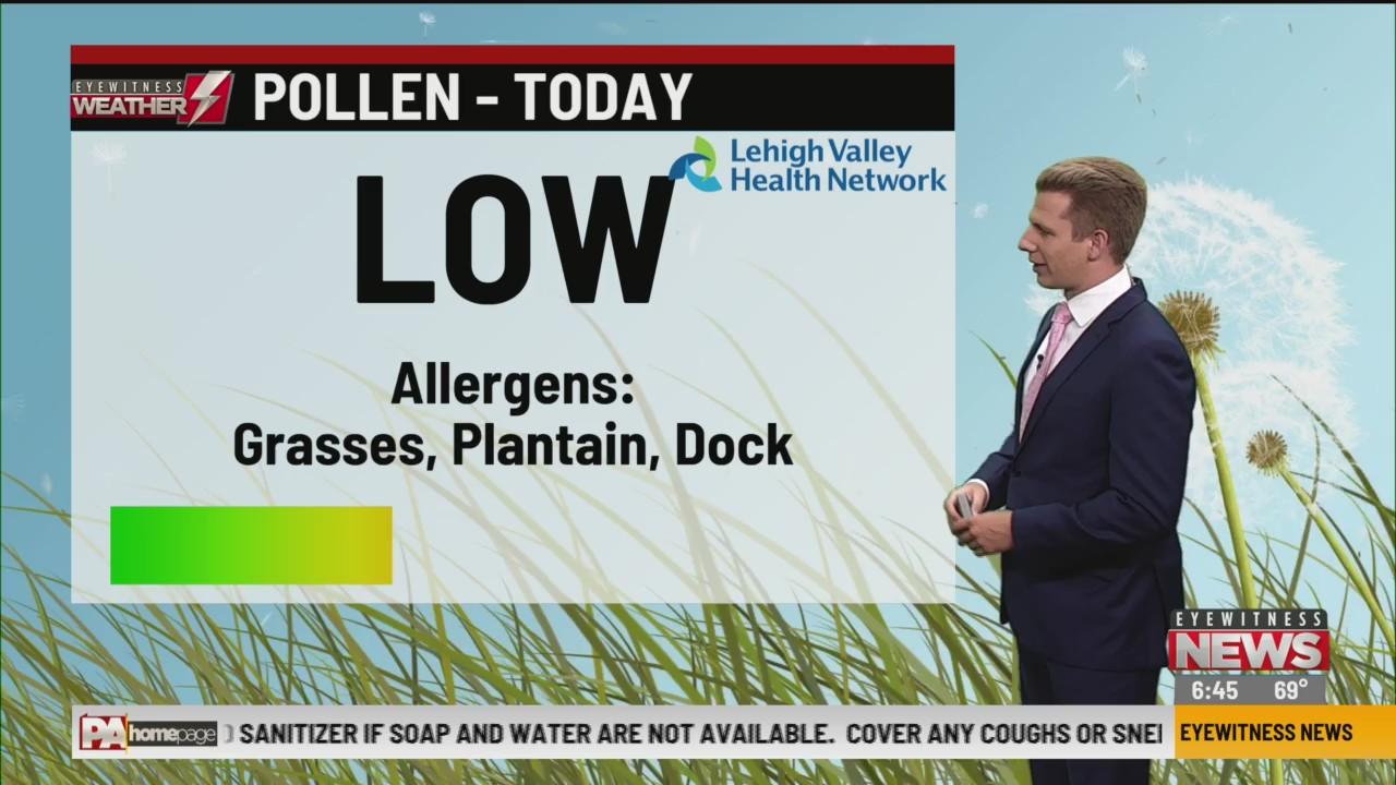 Allergy Alert: June 24, 2020