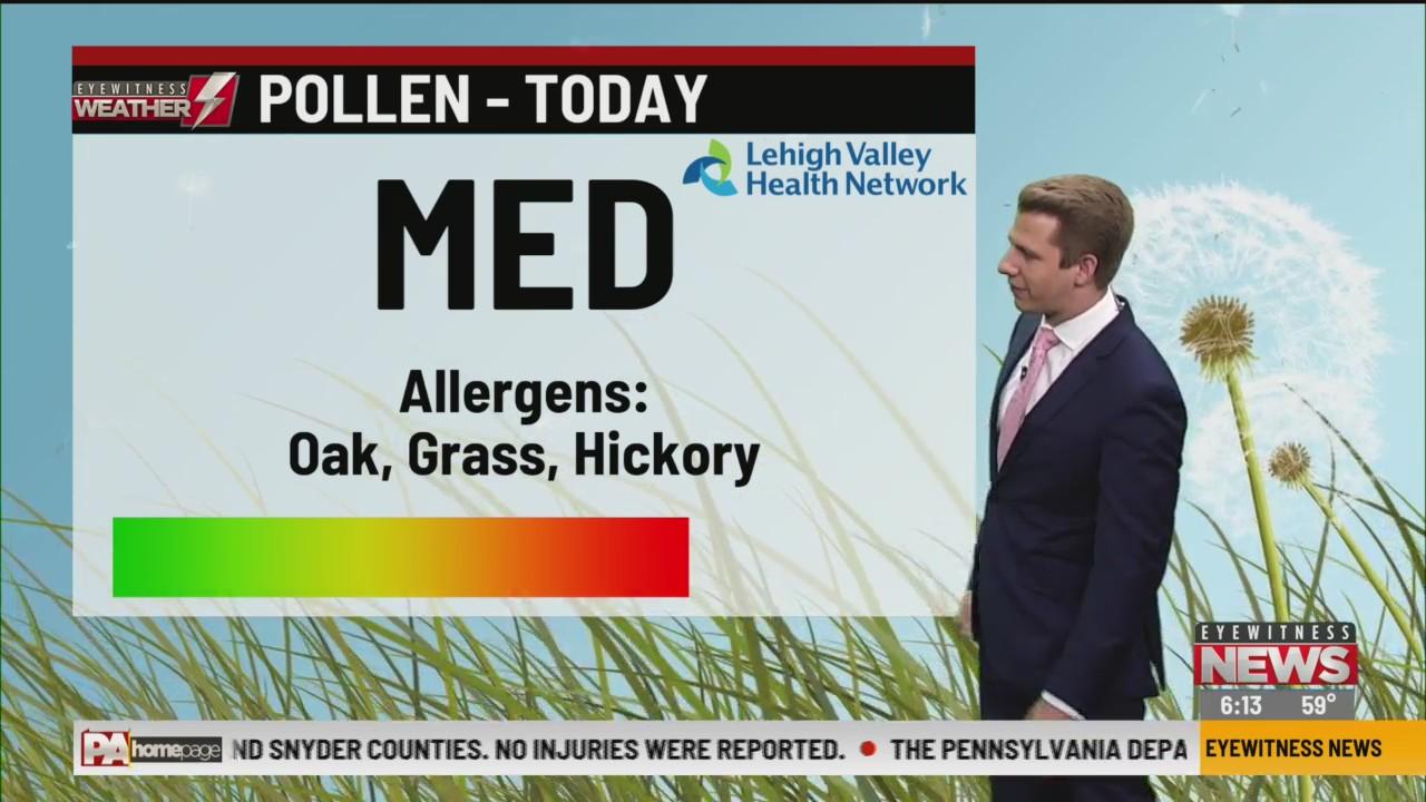Allergy Alert: June 4, 2020
