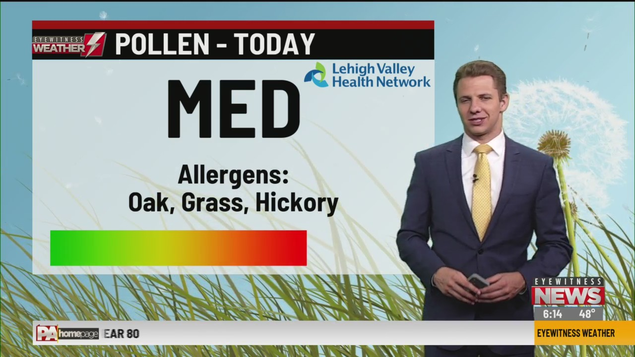 Allergy Alert: June 2, 2020