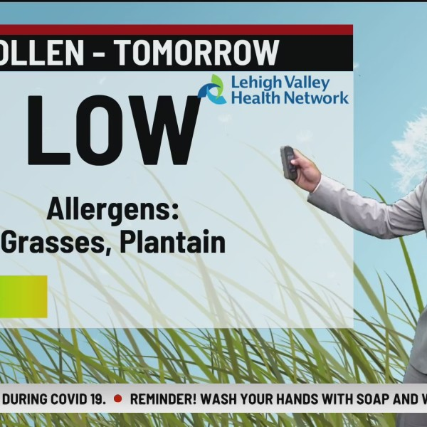 Allergy Alert: July 21, 2020
