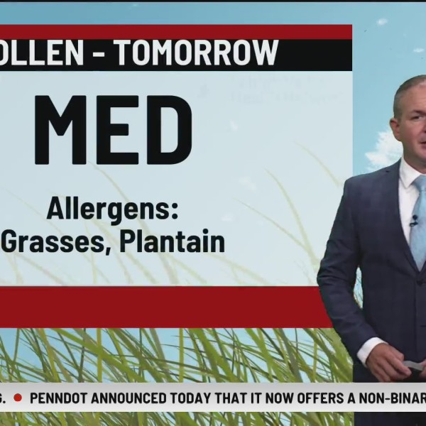 Allergy Alert: July 23, 2020