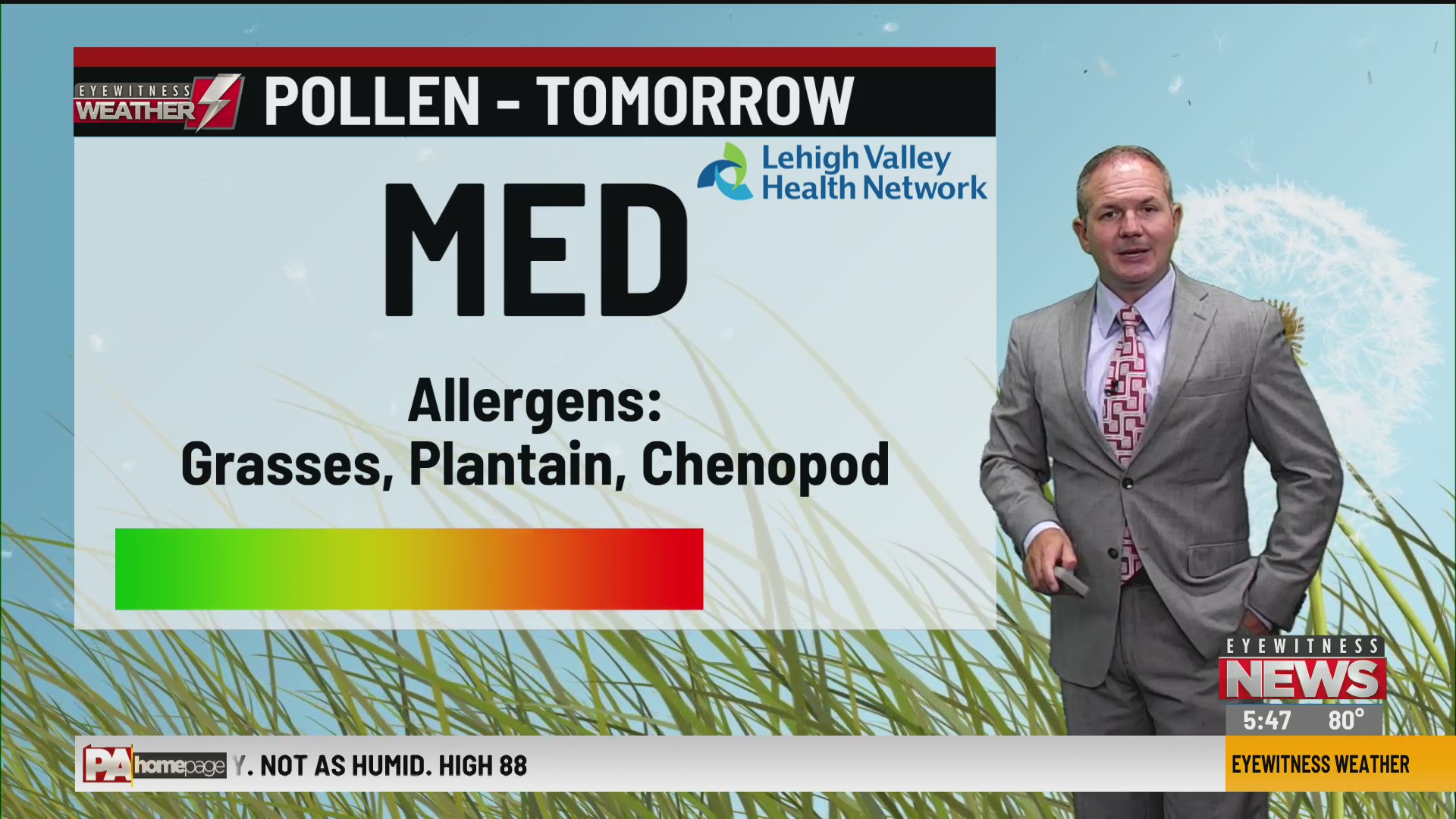 Allergy Alert: July 28, 2020