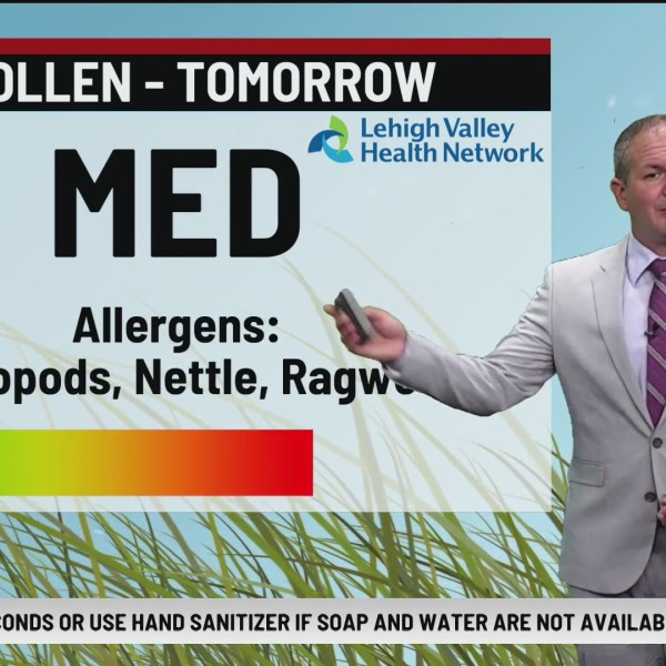 Allergy Alert: August 20, 2020