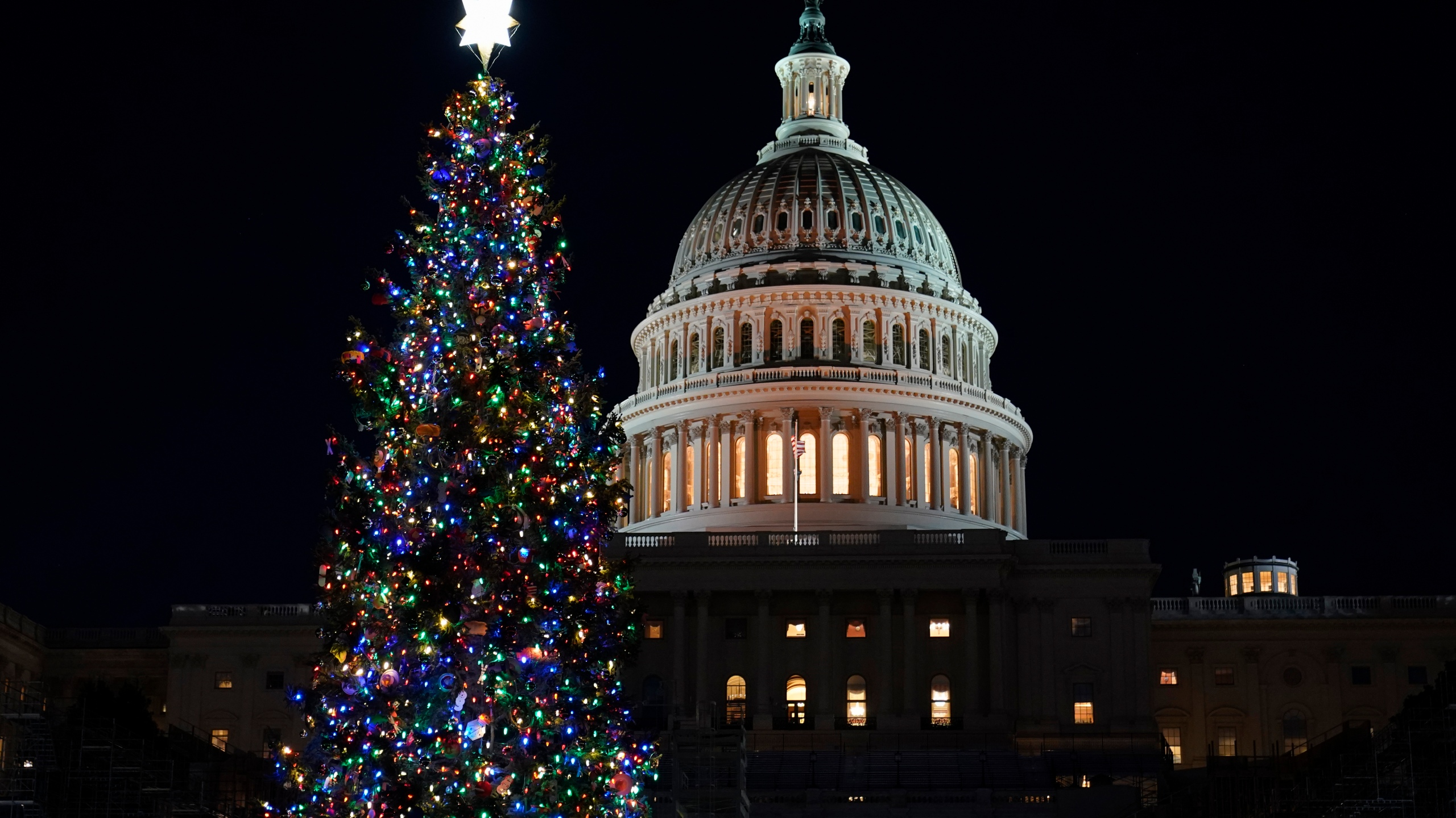 Capitol Christmas Tree, Nancy Pelosi