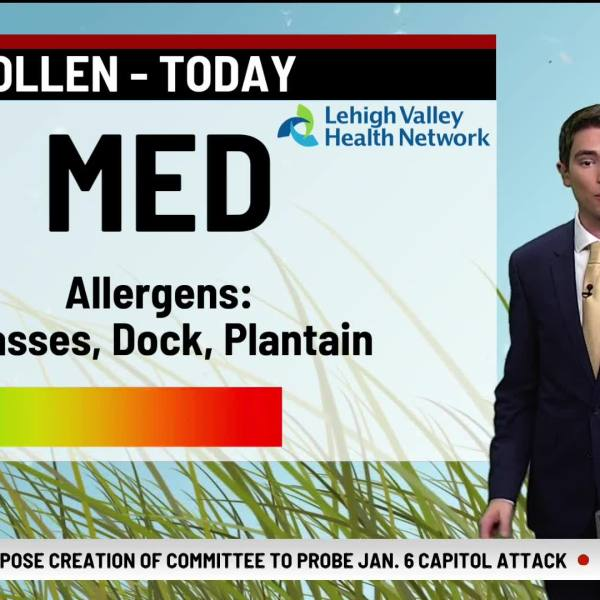 Allergy Alert June 30, 2021
